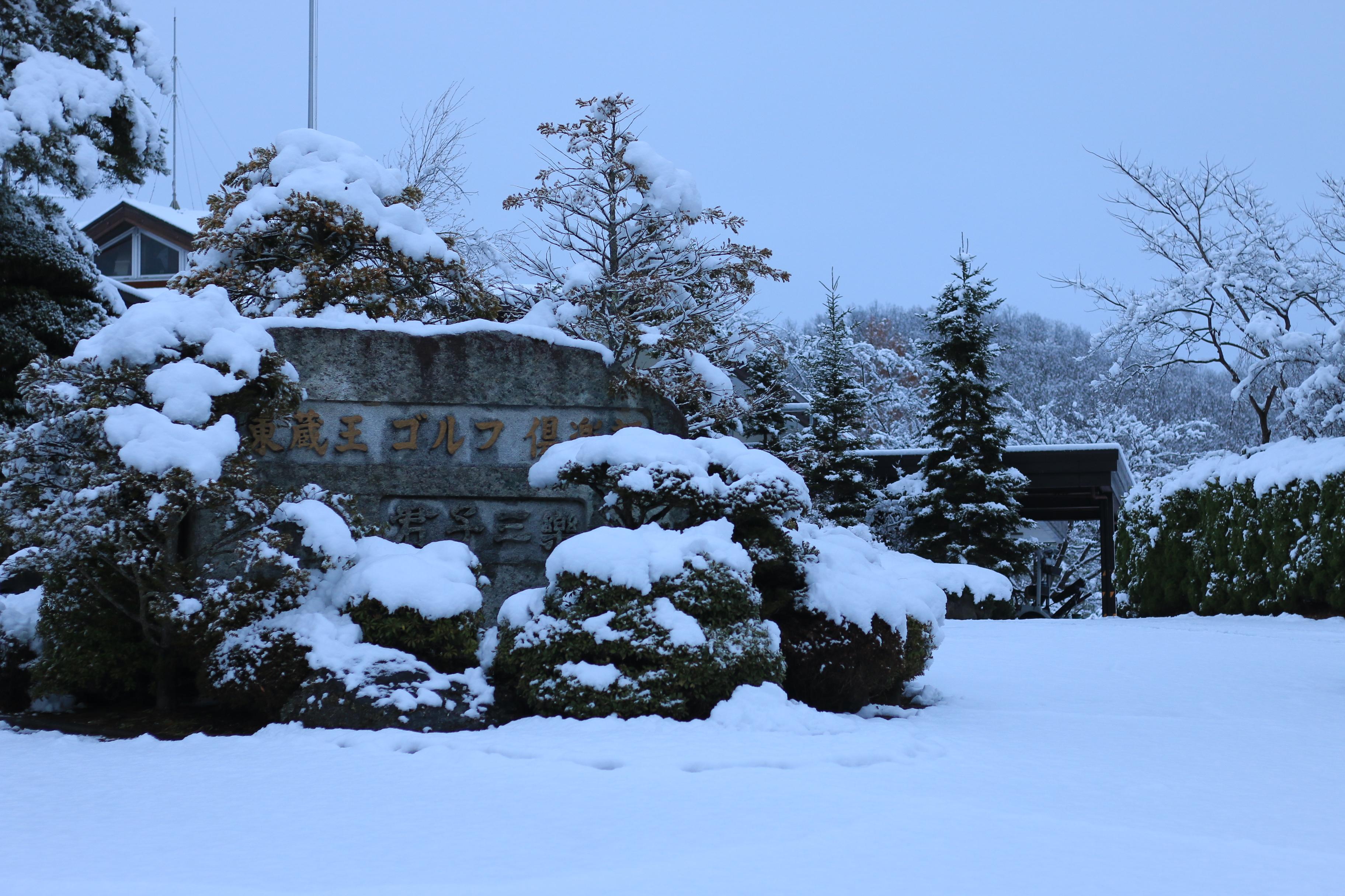 冬(masuda 2019/02/15)